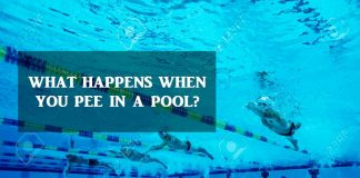 What happens when you pee in a pool